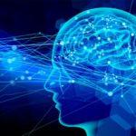 自律神経の乱れに悩む患者様の症例報告です