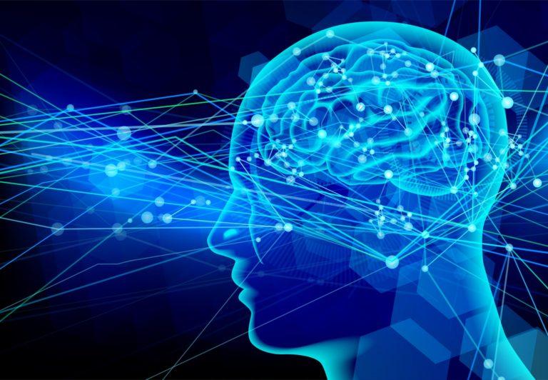 六本木整体・整骨院・カイロプラクティック・脳と神経