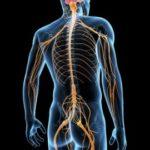 病院で椎間板ヘルニアと診断された腰痛の患者様の症例報告です。